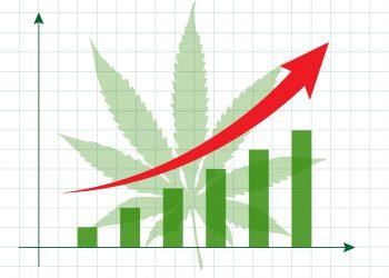 Marijuana - financial background